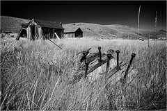 Bodie ghost town, IR (ronnymariano) Tags: 2018 ghosttown landscape ir plants nature landmark bodie cabin california bnw historical barn infrared miningtown old house history outdoors grass abandoned blackandwhite monochrome field
