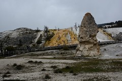 Liberty Cap, Mammoth Hot Springs, Yellowstone (pacgrove) Tags: landscape geothermal