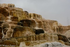 Minerva Terrace (?) Mammoth Hot Springs, Yellowstone (pacgrove) Tags: landscape geothermal