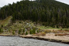 Madison River, Yellowstone (pacgrove) Tags: landscape river mountain forest
