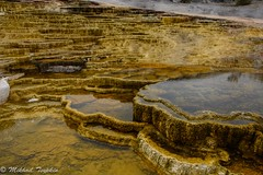 Mammoth Hot Springs, Yellowstone (pacgrove) Tags: landscape
