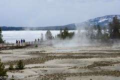 West Thumb Geyser Basin, Yellowstone (pacgrove) Tags: lake water ice mountain geyser steam