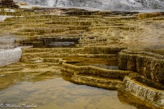 Mammoth Hot Springs, Yellowstone (pacgrove) Tags: landscape geothermal