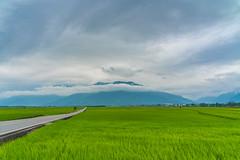 DSC08081 (eHsuan) Tags: 台南 a7iii a73 a7m3 taiwan tainan 台灣 travel 旅行 旅遊 outdoor walk chinese 台東 伯朗大道 雲 cloud