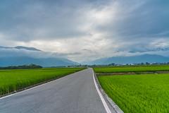 DSC08201 (eHsuan) Tags: 台南 a7iii a73 a7m3 taiwan tainan 台灣 travel 旅行 旅遊 outdoor walk chinese 台東 伯朗大道 雲 cloud