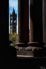 @ Trinity Church looking at the Bell Tower (yarnim) Tags: boston ma massachusetts oldsouthchurch trinitychurchboston trinitychurch copleysquare downtownboston church pillars architecture vintage retro antique belltower pilgrims sony a7m3 a7iii ilce7m3 sel24105g 24105mm zoomlens history