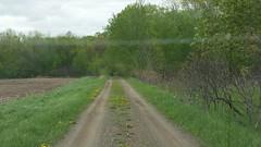 Maywood Cemetery (Elizabeth Almlie) Tags: minnesota bentoncounty maywood maywoodcemetery cemetery road