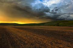 Sun folding for the day (Robert Grove 2) Tags: sunset field clouds washington landscape