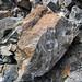 Calciocarbonatite dike (Firesand River Carbonatite Complex, Mesoproterozoic, 1.078 Ga; Wawa Lake East roadcut, northeast of Wawa, Ontario, Canada) 11