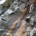 Calciocarbonatite dikes (Firesand River Carbonatite Complex, Mesoproterozoic, 1.078 Ga; Wawa Lake East roadcut, northeast of Wawa, Ontario, Canada) 13