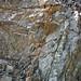 Calciocarbonatite dikes (Firesand River Carbonatite Complex, Mesoproterozoic, 1.078 Ga; Wawa Lake East roadcut, northeast of Wawa, Ontario, Canada) 16