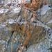 Calciocarbonatite dikes (Firesand River Carbonatite Complex, Mesoproterozoic, 1.078 Ga; Wawa Lake East roadcut, northeast of Wawa, Ontario, Canada) 23