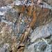 Calciocarbonatite dikes (Firesand River Carbonatite Complex, Mesoproterozoic, 1.078 Ga; Wawa Lake East roadcut, northeast of Wawa, Ontario, Canada) 22