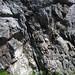 Calciocarbonatite dike (Firesand River Carbonatite Complex, Mesoproterozoic, 1.078 Ga; Wawa Lake East roadcut, northeast of Wawa, Ontario, Canada) 26