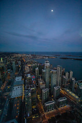 Day 118 of 365 - Skyline (gcarmilla) Tags: toronto cntower city citta skyline evening lights sera