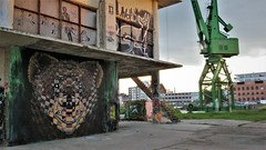 Cee Pil / DOK - 23 mei 2019 (Ferdinand 'Ferre' Feys) Tags: gent ghent gand belgium belgique belgië streetart artdelarue graffitiart graffiti graff urbanart urbanarte arteurbano ferdinandfeys ceepil