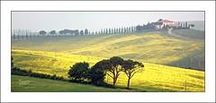 Cercando primavera, un po' Jambo e un po' Gogh. (2) (Jambo Jambo) Tags: panorama landscape campagna countryside valdorcia siena toscana tuscany italia italy sonydscrx10m4 jambojambo torrenieri