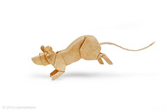 Running Mouse (cavemanboon*) Tags: boon ronaldkoh ロナルド・コウ mouse ネズミ 鼠 折り紙 origami paperfolding cavemanboon singapore malaysia 羅納德・許 rat