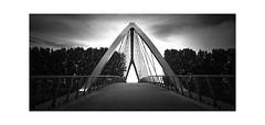 Vanishing Point (henny vogelaar) Tags: bridge bw liniebrug nigtevecht fietsbrug bicyclebridge ivomulders netherlands