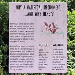 Waterfowl Impoundment (blazer8696) Tags: img7853 butner northcarolina unitedstates 2019 ecw knapofreeds nc t2019 usa