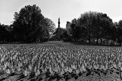 Memorial Day Weekend in Boston. (WilliamND4) Tags: memorial day flags memorialday blackandwhite blackwhite monochrome boston americanflags nikon d750