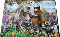"FALCON ? 500 ''IN THE SUMMER MEADOW'' ART ? HORSE & FOAL Mat Edwards DELUXE, (Andrew Reynolds transport view) Tags: jigsaw ""jigsaw puzzle"" picture pieces large difficult falcon hobby leisure pasttime f500inthesummermeadowarthorsefoalmatedwardsdeluxe"