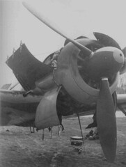 FW190 A4 9  openned up for inspection and maintenance (DREADNOUGHT2003) Tags: luftwaffe luftwaffee aces aircraft aerialwarfare aerialwreck fighters fighter wwii wwiibombers planes plane warplanes warplane warproduction