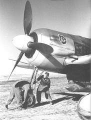 FW190 Pre Flight Tunisia April 1943 (DREADNOUGHT2003) Tags: luftwaffe luftwaffee aces aircraft aerialwarfare aerialwreck fighters fighter wwii wwiibombers planes plane warplanes warplane warproduction