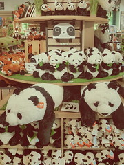 #goodpandacontest //:Pandas Pandas Pandas Pandas:// flickr Panda Meeting the plushy Giant Panda Bears and Red Pandas at the shop of the Zoo Tiergarten Schönbrunn (hedbavny) Tags: goodpandacontest flickr contest zoo tiergarten schönbrunn shop cuddlytoy stuffedanimal kuscheltier stofftier plüschtier plushie softtoy fluffy fluffytoy wien vienna austria österreich hedbavny ingridhedbavny goodpandaphotocontest photocontest photo wildrepublic bear pandabear redpanda giantpanda groserpanda pandabär bär roterpanda kleinerpanda
