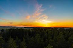 May sunset (Arttu Uusitalo) Tags: sunset evening may dusk colorful sky spring finland southern ostrobothnia kauhava forest woods field canon eos 5d mkiv tamron 2470 twilight