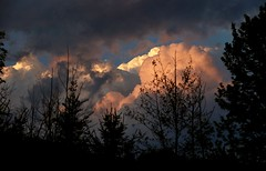 Layers Of Clouds (Diane Marshman) Tags: clouds layers sky white peach blue sunset trees dusk pa pennsylvania nature multiple evening