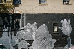 Wall Buddha (bingley0522) Tags: contaxiia carlzeissbiogon35mmf28 kodakcolorplus200 sanfrancisco chinatown mural streetart autaut