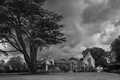 Nymans (Paulie-W) Tags: nymans countryhouse gardens nt clouds tree