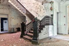 Bouquet (Baldran) Tags: abandoned vacant derelict decay ruin rural mansion urban exploration sanitarium