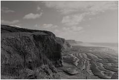 Jurassic Heritage Coastline South Wales : December 1997. (garethdavies486) Tags: canon f1 fd 35mm2 kodak d23 ilford fp4 south wales coast southerndown landscape diy film scanning negative image