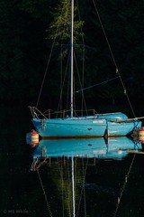 Time for Springtime reflection (Picture-Perfect Pixels) Tags: protected canada britishcolumbia vancouverisland centralsaanich may2019 spring sunset scenic aquablue reflections anchored todinlet gowllandtodprovincialpark bcparks boat sailboat