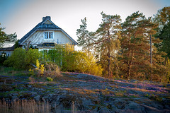 Untitled (Mikael Neiberg) Tags: colors nature naturesbeauty woodenhouse oldhouse island pukkisaari finnishnature finland seurasaari helsinki sunset golden hour landscape trees rock seashore nikond700 tamronsp70300mmf456divcusd
