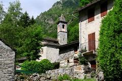 Piemonte - Biellese, Vallecervo: le Desate, Rosazza (mariagraziaschiapparelli) Tags: maggiociondoli montagna piemonte biellese vallecervo desate fioritura allegrisinasceosidiventa