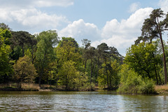 Water, land and sky (Photography by Martijn Aalbers) Tags: oisterwijksebossen forest bos natuur nature spring lente mei may noordbrabant the netherlands nederland canoneos77d ef70200mmf4lisusm wwwgevoeligeplatennl