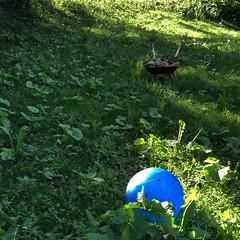 little paradise (Rosmarie Voegtli) Tags: playground garden grass meadow ball stones dornach odc ourdailychallenge schoolsoutforsummer morningwalk kid play paradise paradies paradis paradiso summertime summer blue blau bleu square iphone