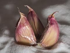 Macro Mondays: Superstition (John Spooner) Tags: superstition garlic clove salt macro panasonic lumix gx80 gx85 knoblauch sodiumchloride olympus60mm salz sel halen ail чеснок ajo aglio σκόρδο macromondays