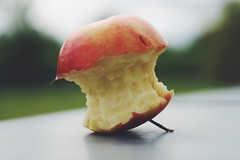The sun has gone away. Yawns in the silent rain, a vivid apple core. (erlingraahede) Tags: canon vsco denmark poetic spring mellow applecore