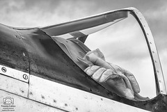 Resting (allentimothy1947) Tags: airshow winecountryairshow airplanes air show bw wine country airframe black white canopy classic cockpit fighter gloves mustang paint plastic resting rivits screws sky work