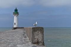 Le gardien du phare (Saint-Valéry-en-Caux) (Tormod Dalen) Tags: pentax pentaxart france normandie