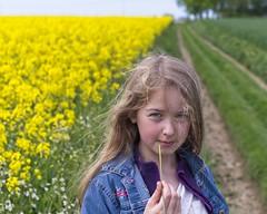 Jeune fille à la moutarde (Tormod Dalen) Tags: pentax pentaxart france normandie