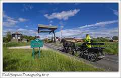 Barnby Dun, South Yorkshire (Paul Simpson Photography) Tags: horse transport barnbydun southyorkshire doncaster may2019 bluesky weather canal canalcrossing viewsofengland paulsimpsonphotography road carriage sonya77 imagesof imageof photosof photoofgrass