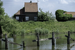 And no, it doesn,t come much more neglected in Holland . . (Eduard van Bergen) Tags: neglected old broken ruine house haus maison abandoned vintage biesbosch brabantse holland polder netherlands niederlande picture photo foto still fujixe1 xc50230oisii fujifilm fujinon