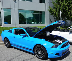 2014 Ford Mustang MCA Edition (D70) Tags: 2014 ford mustang mca edition gmva 35thannual springshow harboursideplace northvancouver britishcolumbia canada mustangclubofamerica grabberblue