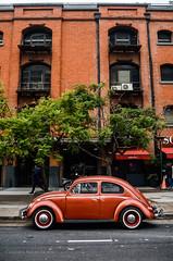 Escarabajo (guspaulino1) Tags: volkswagen escarabajo fusca buenosaires ciudad calle ciudadautonomadebuenosaires argentina nikond7000 sigma18200 autos autosclásicos puertomadero