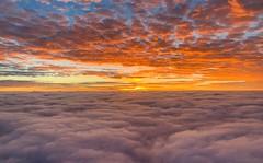 Coral Sea Sunrise (simonmgc) Tags: cairns cloud coolangatta coralsea sunrise